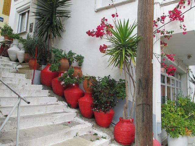 Schody s veľkámi červenými kvetináčmi a ratslinami.jpg